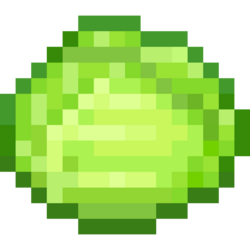 -B- Cabbage.png