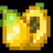 -B- Papaya