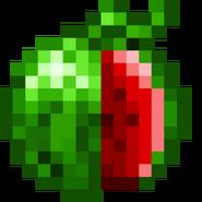 -B- Watermelon