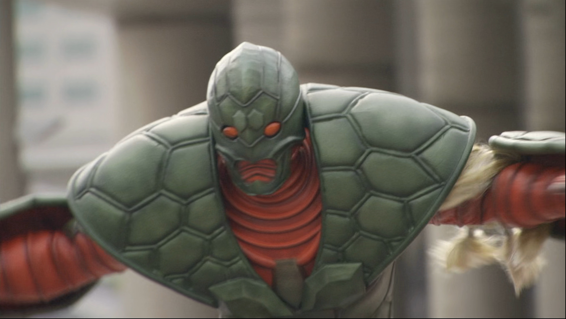 Tortoise Imagin
