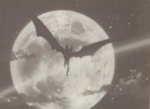 Bat Man (EVE)