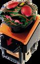 KRFo-Amazon Switch