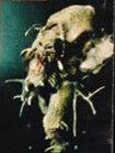 Re-imag Mole Cricket Mutant.jpg