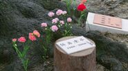 Sukimo Shijima grave