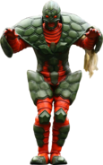 KRDO-Tortoise Imagin (Turtle)