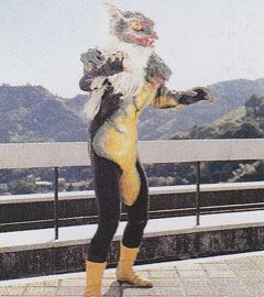 Catgecko