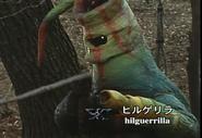 Hilguerrilla spelling