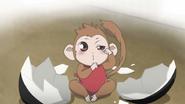 Mamoru hatched