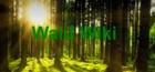 Wald Wiki