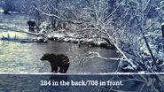 ELECTRA 284 PIC 2017.10.xx 284 FAR w 708 NEAR GREENRIVER POSTED 2020.02.09 08.11