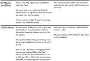 BB 24 INFO 2014 BoBr PAGE 53 BOTTOM ONLY