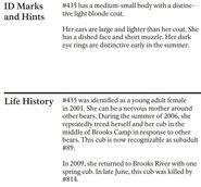 HOLLY 435 INFO 2010 BoBr PAGE 36 BOTTOM ONLY