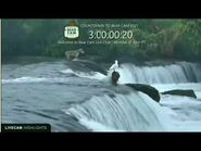 Bear Cam Countdown 2021