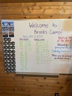 2021 BEARS SEEN LIST FROM BROOKS CAMP DRY ERASE BOARD 2021.08.27 - 2021.08.29 SHERRIS 2021.09.14
