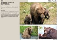 OTIS 480 INFO 2015 BoBr PAGE 85 415s PAGE