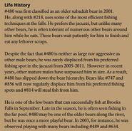 OTIS 480 INFO 2015 BoBr PAGE 61 LIFE HISTORY ONLY