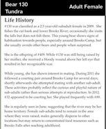 130 TUNDRA PAGE INFO 2012 BoBr iBOOK ID LIFE HISTORY