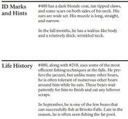 OTIS 480 INFO 2010 BoBr PAGE 18 BOTTOM ONLY