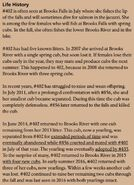 402 INFO 2017 BoBr PAGE 49 LIFE HISTORY ONLY
