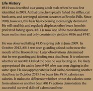 LURCH 814 INFO 2017 BoBr PAGE 80 LIFE HISTORY PART 1 of 2 ONLY