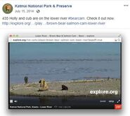 HOLLY 435 INFO 2014.07.15 15.48 435 w SPRING CUB 719 ON LOWER RIVER CAM KNP&P FB POST
