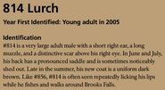 LURCH 814 INFO 2015 BoBr PAGE 67 IDENTIFICATION ONLY