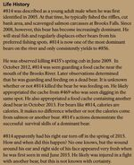 LURCH 814 INFO 2016 BoBr PAGE 78 LIFE HISTORY ONLY
