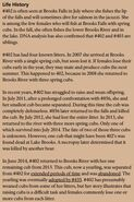 402 INFO 2015 BoBr PAGE 37 LIFE HISTORY ONLY
