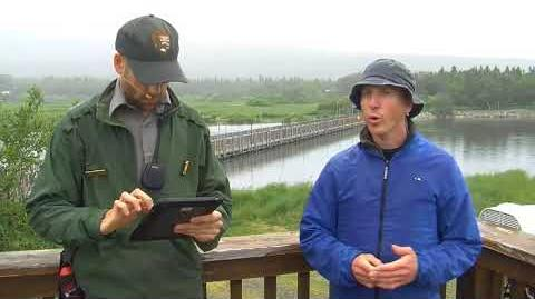 07.04.2018 - Mike Fitz and Ranger Andrew Discuss the Death of Spring Cub by Brenda D