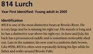LURCH 814 INFO 2016 BoBr PAGE 78 IDENTIFICATION ONLY