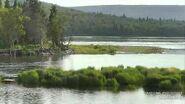 Lower River June 14, 2021 snapshot by TyleneRose