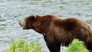 151 Walker June 5, 2021 NPS photo by Ranger Naomi Boak (aka NSBoak) .02