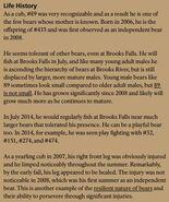 BACKPACK 89 INFO 2015 BoBr PG 54 LIFE HISTORY ONLY