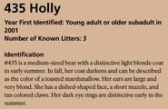 HOLLY 435 INFO 2017 BoBr PAGE 52 IDENTIFICATION ONLY