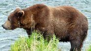 151 Walker June 5, 2021 NPS photo by Ranger Naomi Boak (aka NSBoak) .01