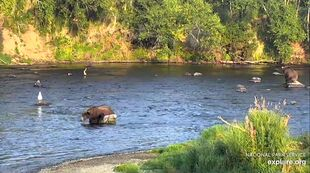 909 PIC 2019.08.24 910 LEFT w 909 RIGHT ROCK SITTIN GREENRIVER POSTED 2020.02.02 07.57 06