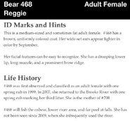 468 REGGIE PAGE INFO 2012 BoBr iBOOK