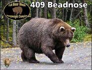 BEADNOSE 409 PIC 2015.10.13 409 WINS 2015 FAT BEAR CONTEST 01 CHAMPION PHOTO