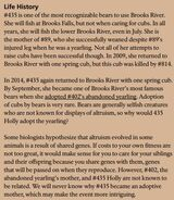 HOLLY 435 INFO 2015 BoBr PAGE 40 LIFE HISTORY ONLY