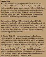 LURCH 814 INFO 2015 BoBr PAGE 67 LIFE HISTORY ONLY