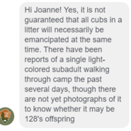 INFO BEARS SEEN 2018.05.20 or PRIOR 128 GRAZER w 3 THEN 2 2.5 YO CUBS KNP&P REPLY TO GREYHOUND JO re SINGLE LIGHT COLORED SUBADULT 02
