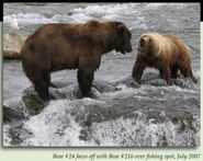 216 MARILYN PIC 2007.07.xx 24 BB LEFT & 216 MARILYN RIGHT FACE OFF FISHING SPOT in 2012 BoBr iBOOK 01