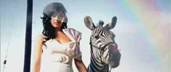 Hot N Cold-icon.png
