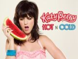 Hot N Cold (song)