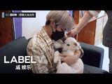 -WayV-ariety- 🐶🐱Visit The Animal Shelter - TEN X YANGYANG's Enjoy The Challenge! Ep