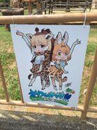 Giraffe serval misaki
