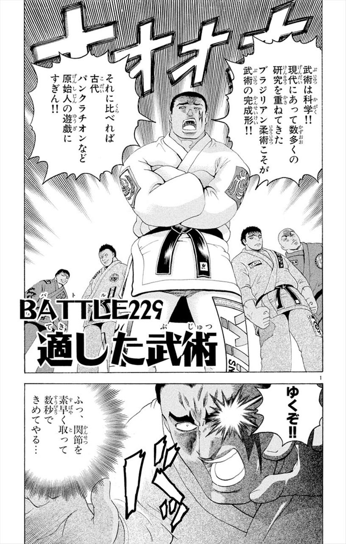 Battle 229
