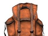 Shopkeepers goods bag