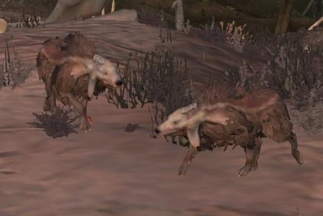 Boneyard Wolf