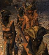 Mercenary Guild 6
